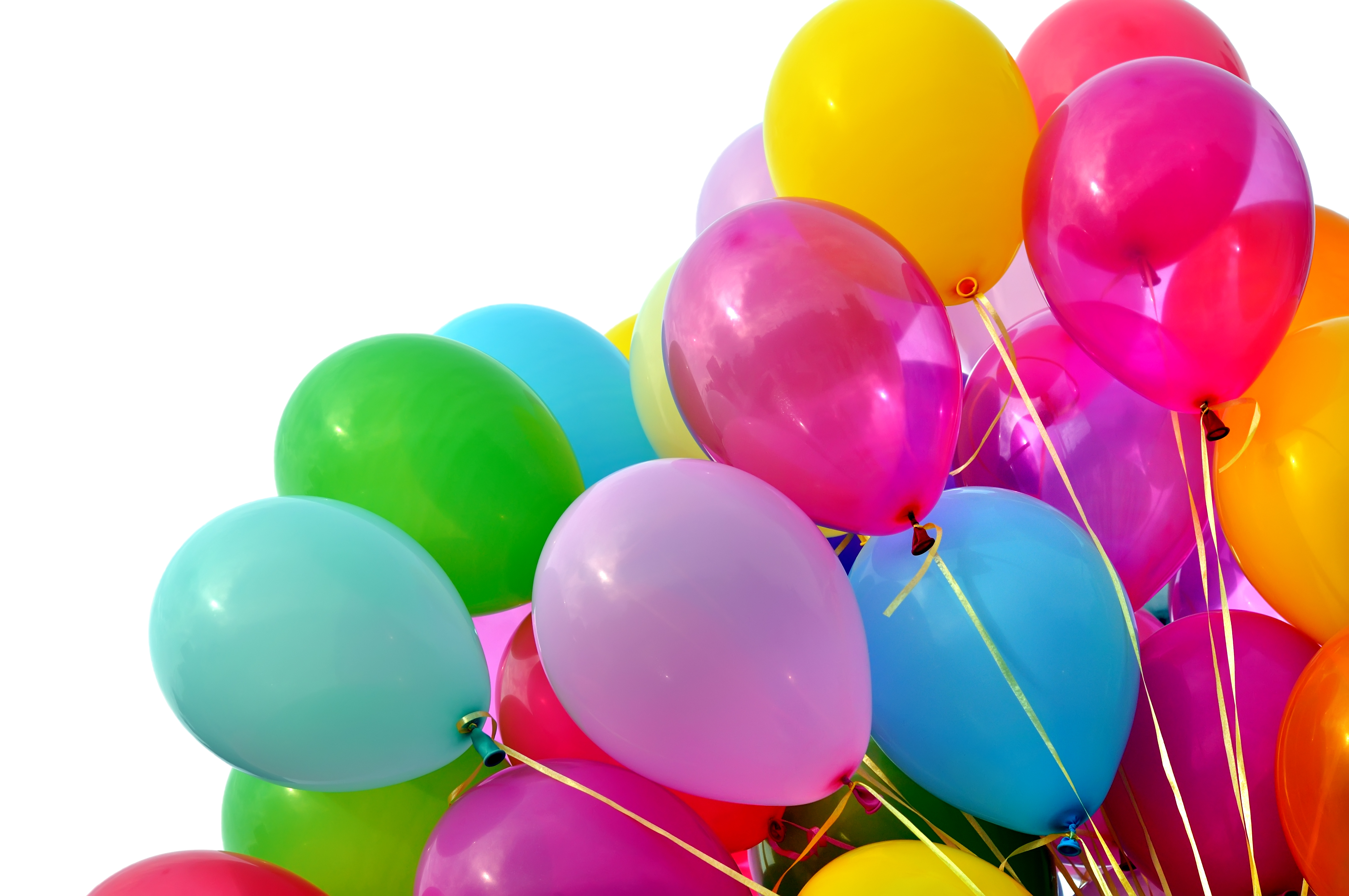 Besta Birthday Festa (BBF)